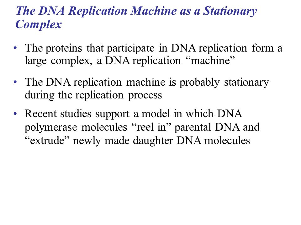 The DNA Replication Machine as a Stationary Complex