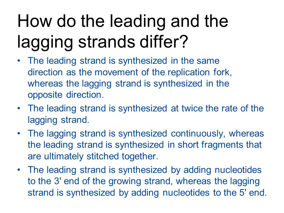 How do the leading and the lagging strands differ