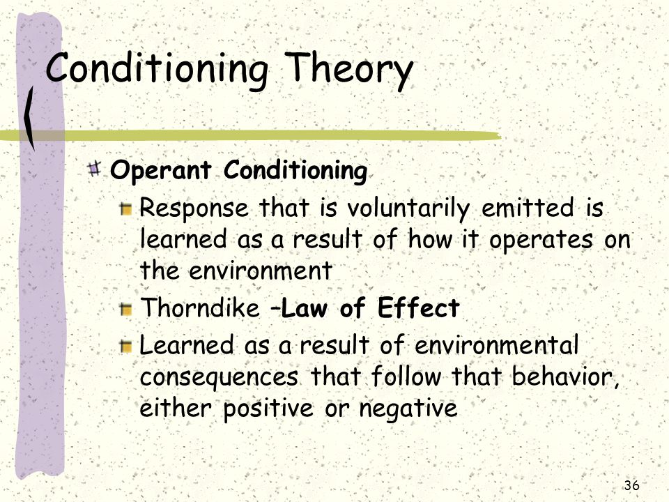 Conditioning Theory Operant Conditioning