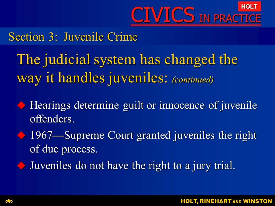 Section 3: Juvenile Crime