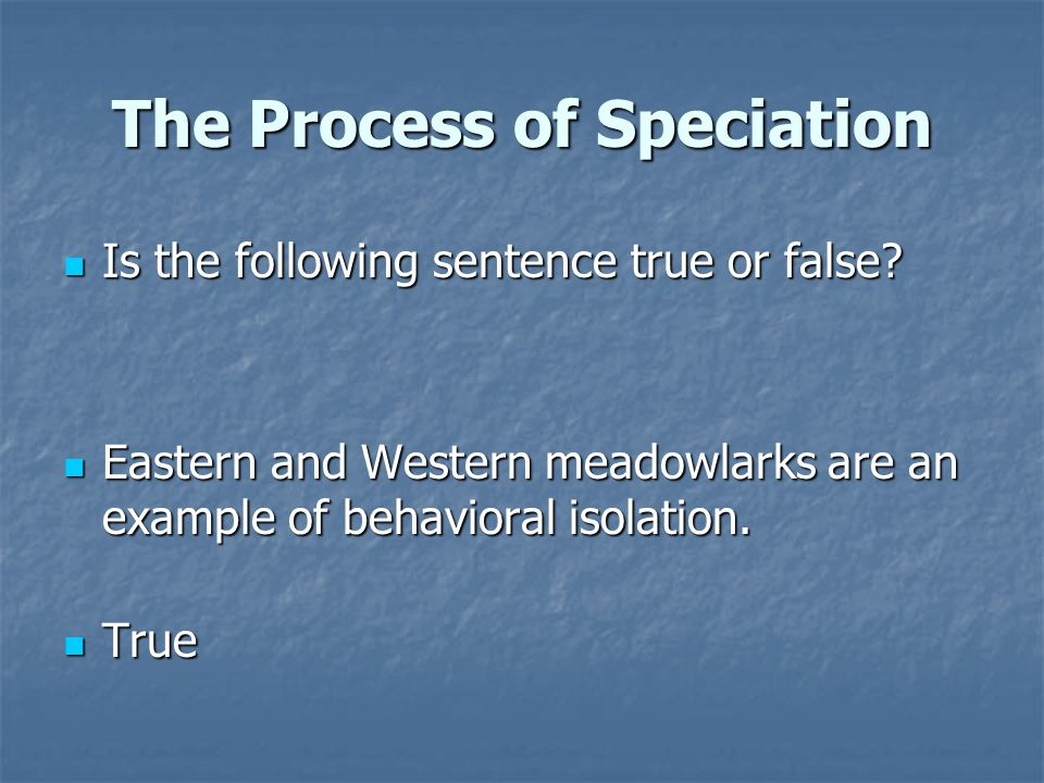 The Process of Speciation