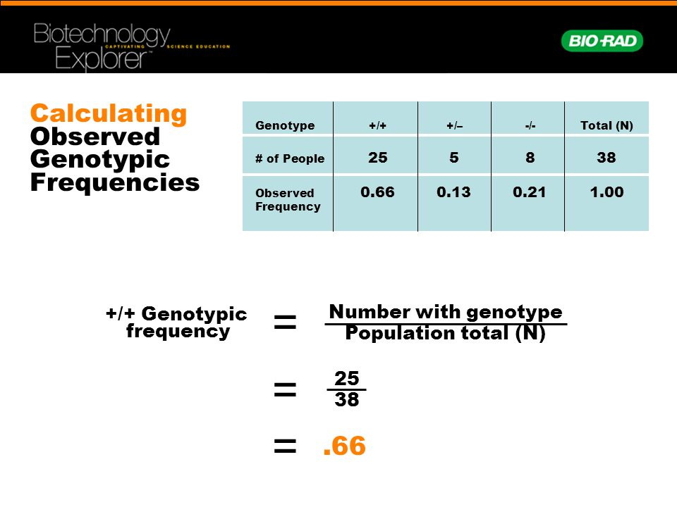 Calculating Observed Genotypic Frequencies