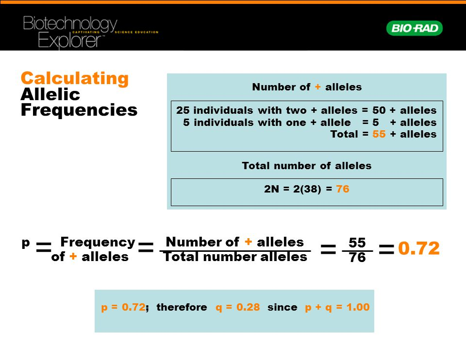 Calculating Allelic Frequencies