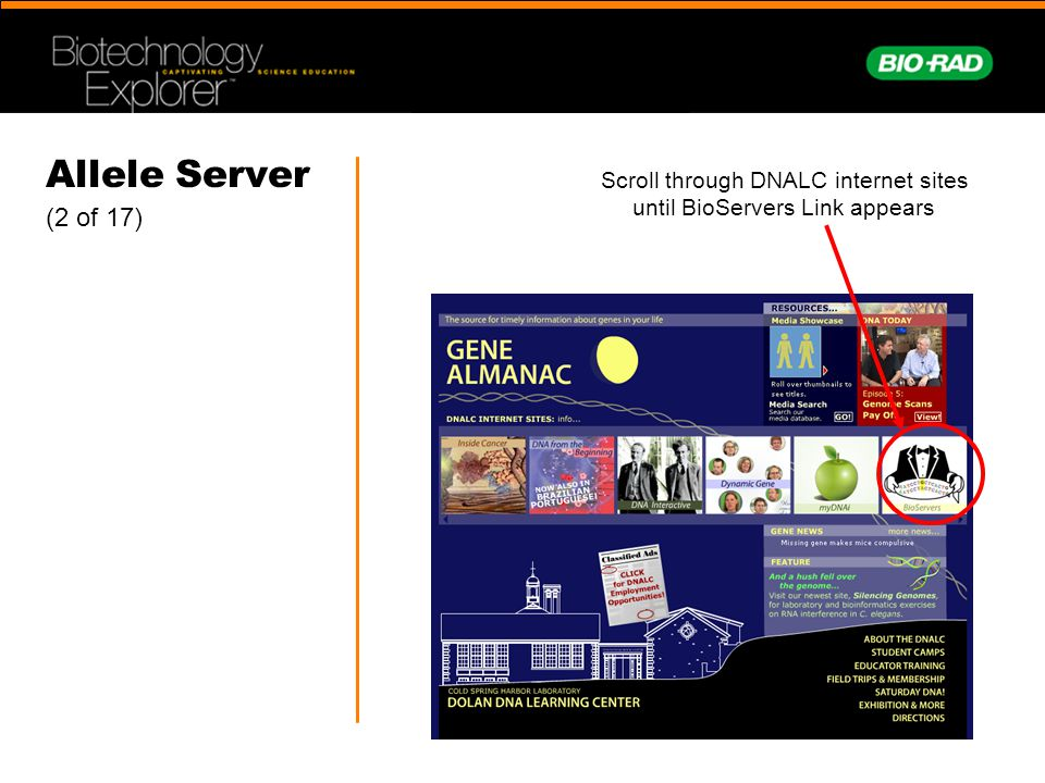 Allele Server (2 of 17) Scroll through DNALC internet sites