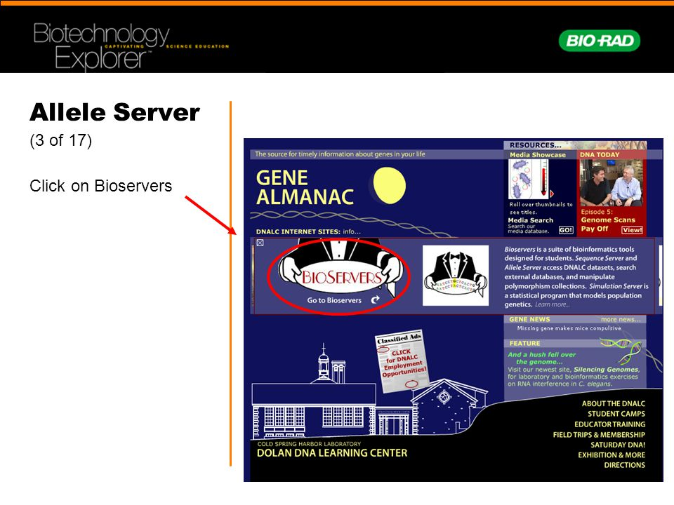 Allele Server (3 of 17) Click on Bioservers