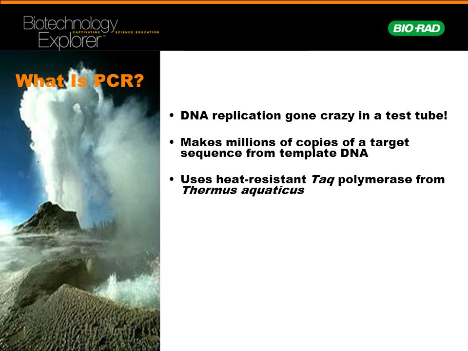 What Is PCR • DNA replication gone crazy in a test tube!