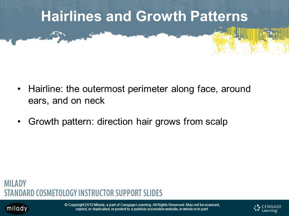 Hairlines and Growth Patterns