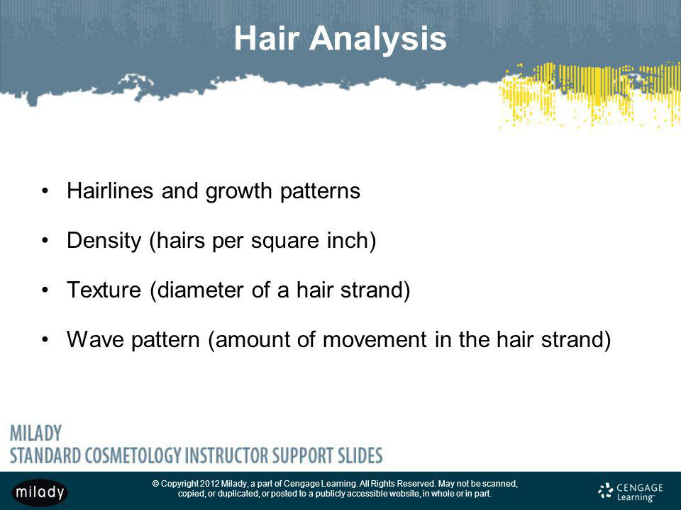 Hair Analysis Hairlines and growth patterns