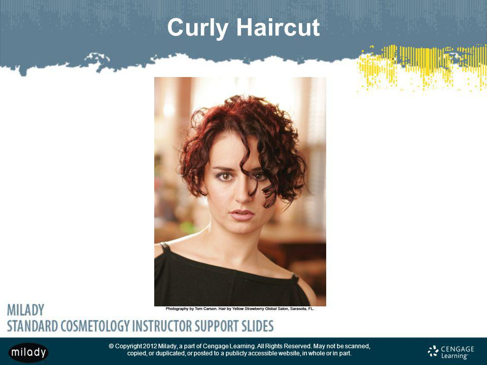 Curly Haircut Also see Figures 16–95 and 16–96.