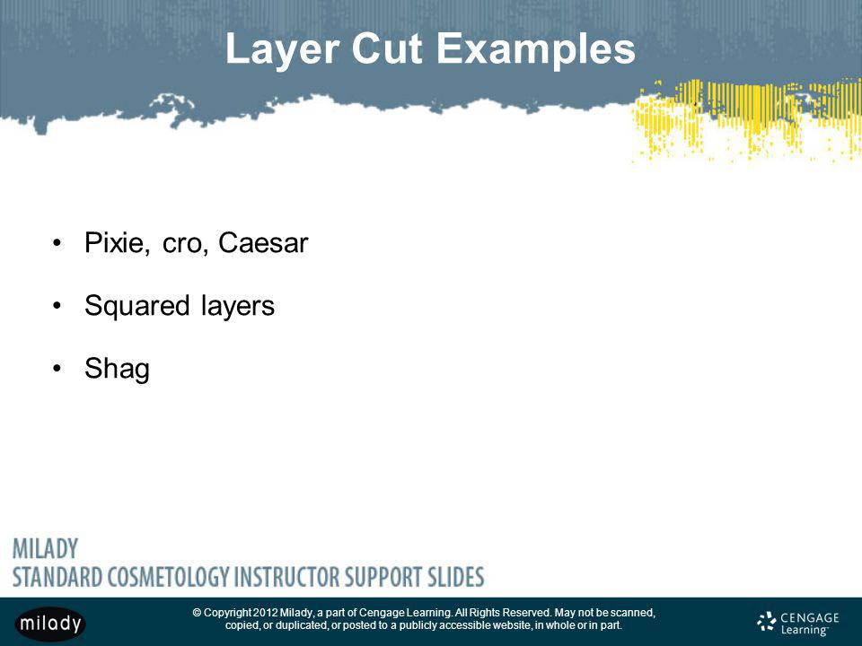 Layer Cut Examples Pixie, cro, Caesar Squared layers Shag