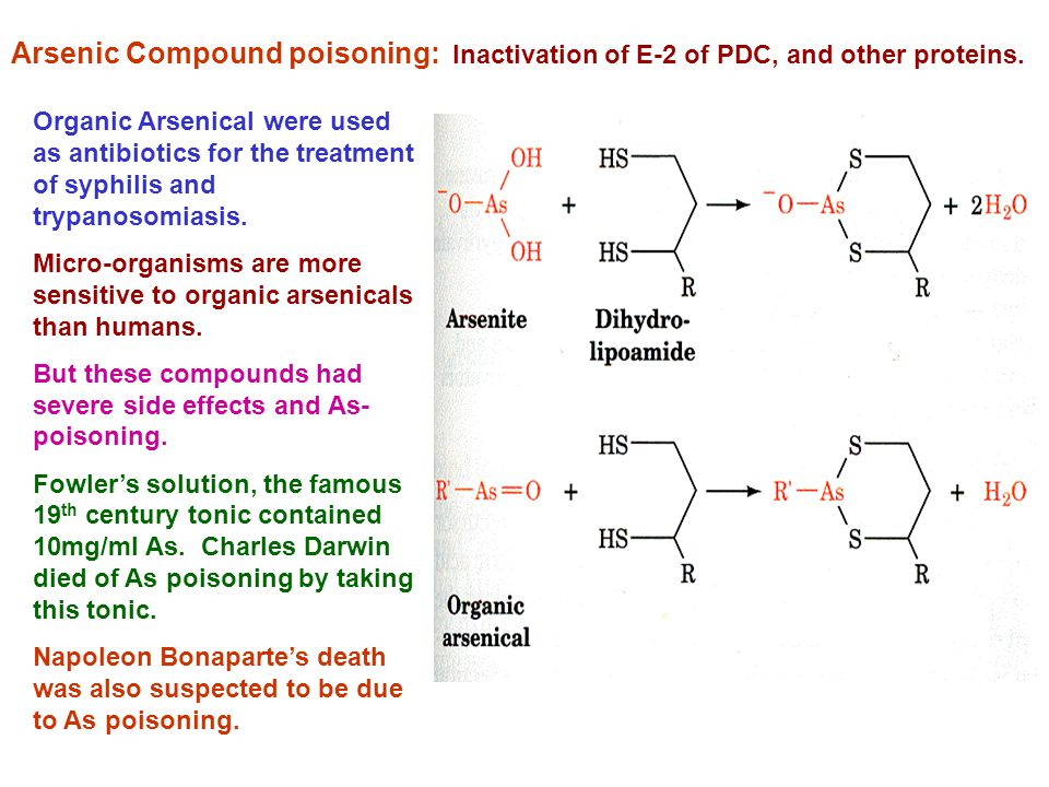 Arsenic Compound poisoning: Inactivation of E-2 of PDC, and other proteins.