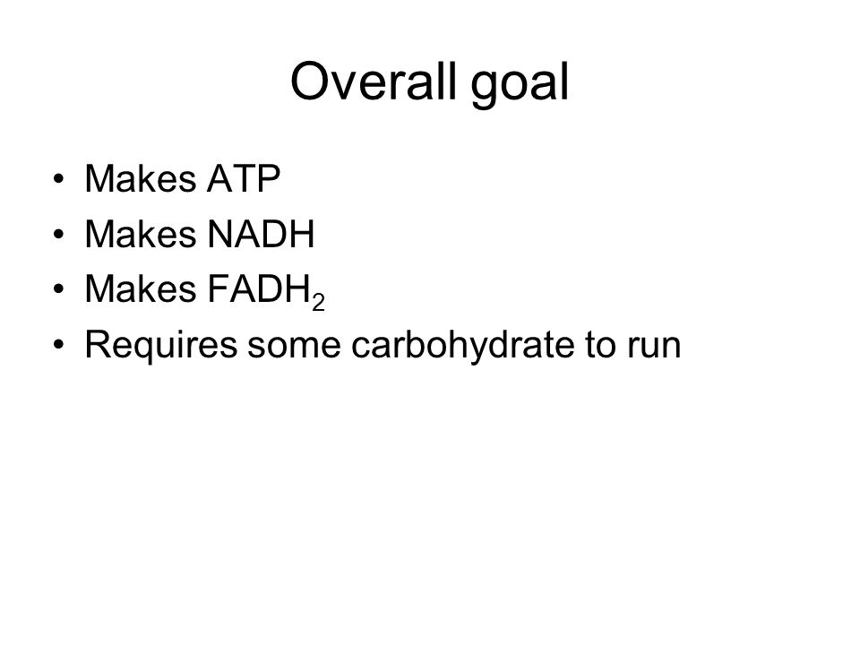 Overall goal Makes ATP Makes NADH Makes FADH2