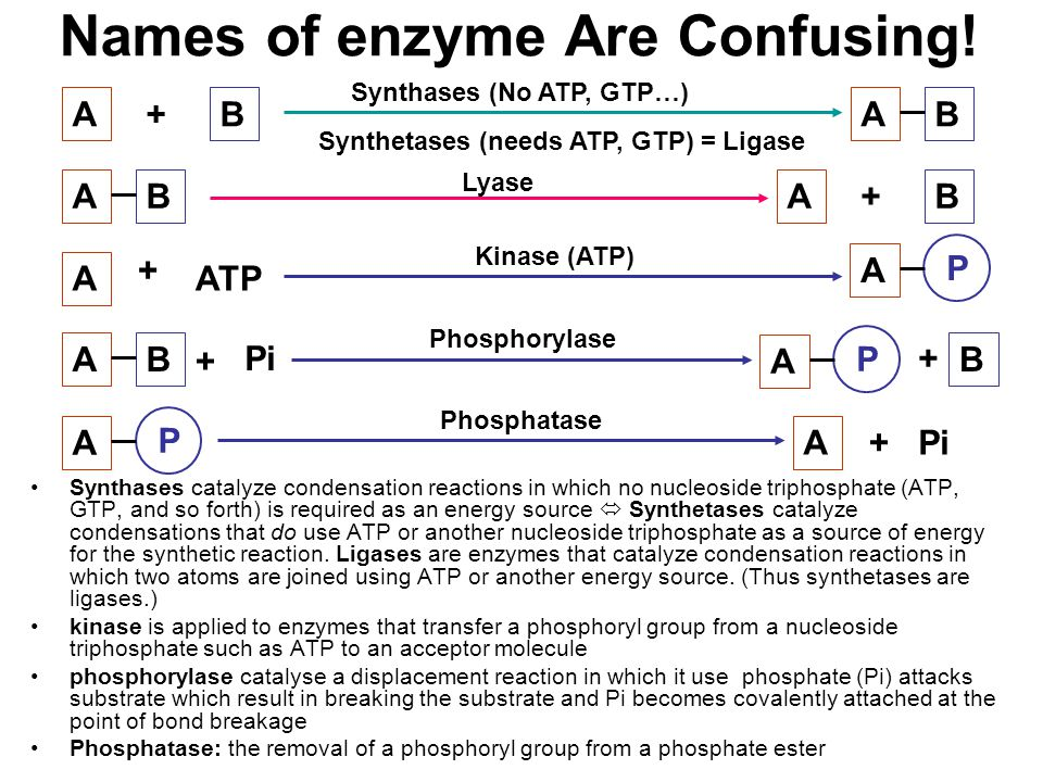 Names of enzyme Are Confusing!