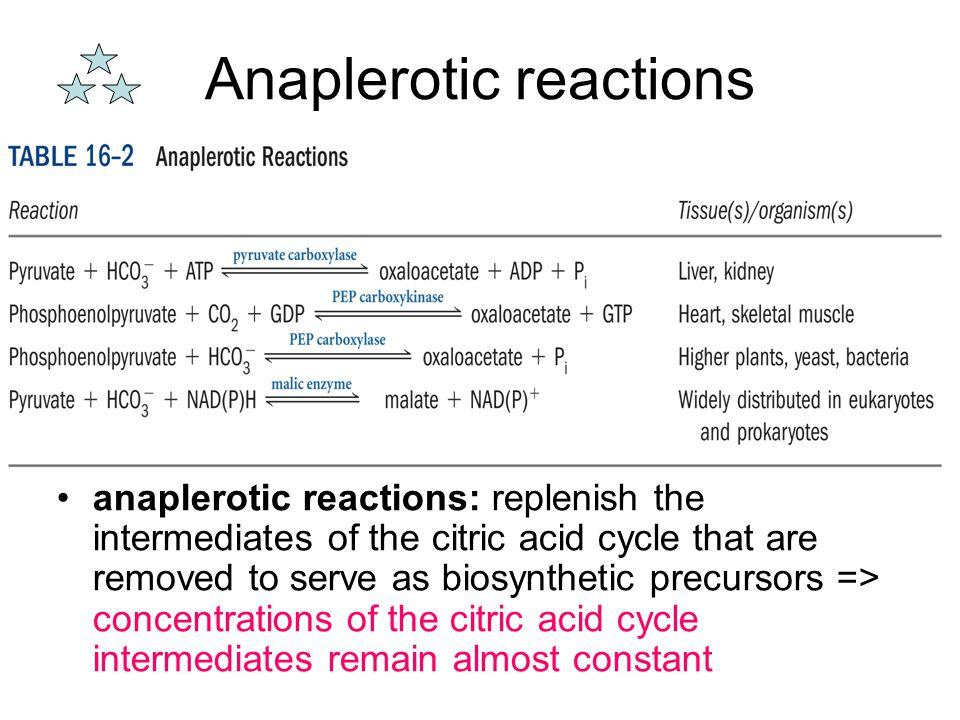 Anaplerotic reactions