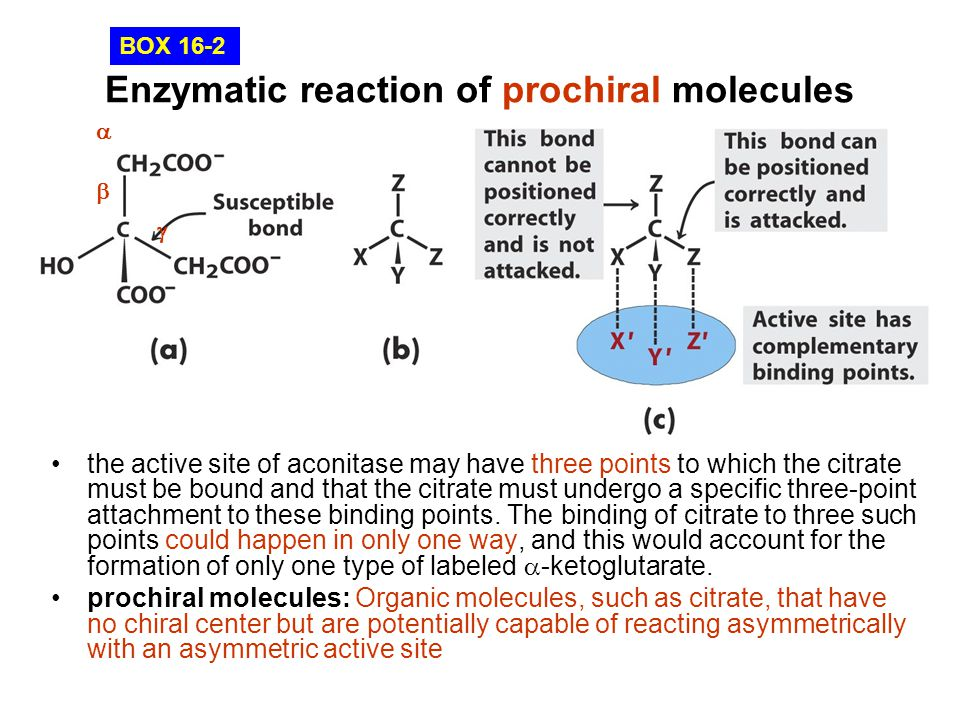 Enzymatic reaction of prochiral molecules