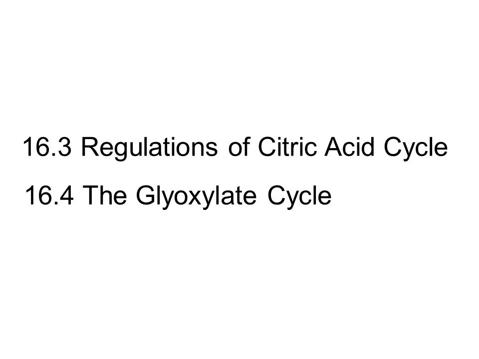 16.3 Regulations of Citric Acid Cycle