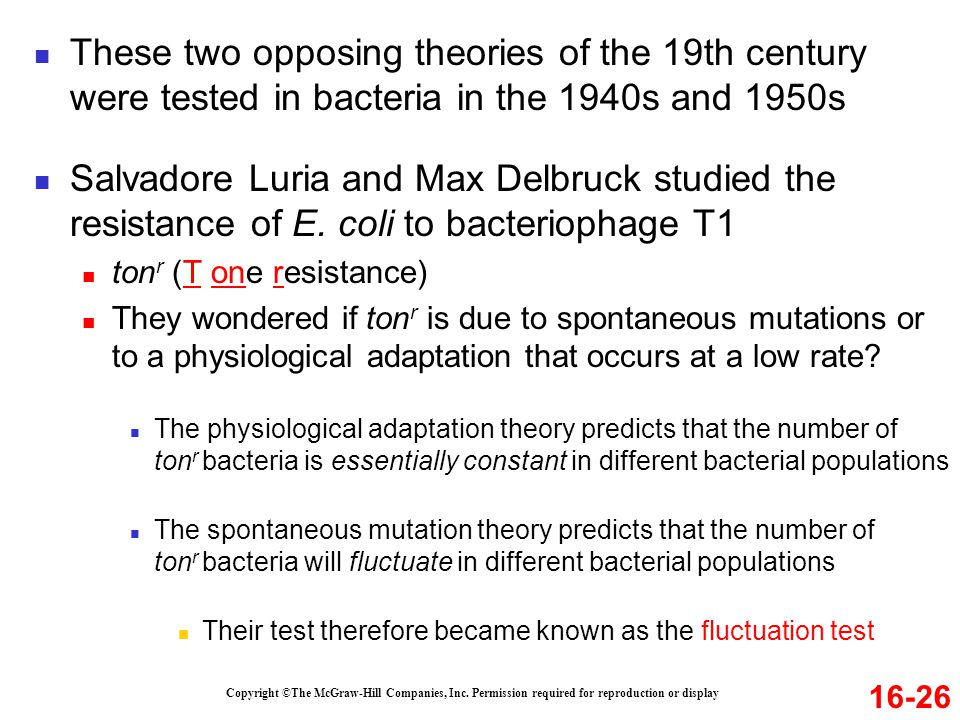 These two opposing theories of the 19th century were tested in bacteria in the 1940s and 1950s