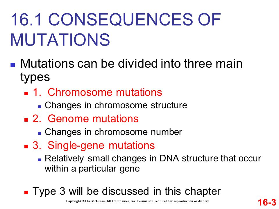 16.1 CONSEQUENCES OF MUTATIONS