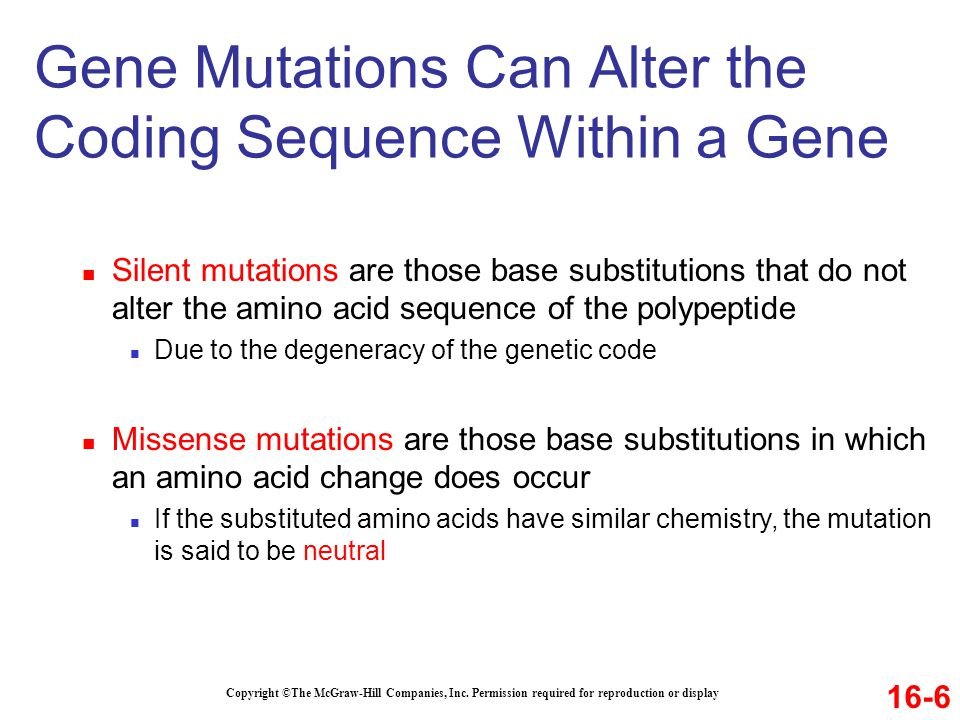 Gene Mutations Can Alter the Coding Sequence Within a Gene