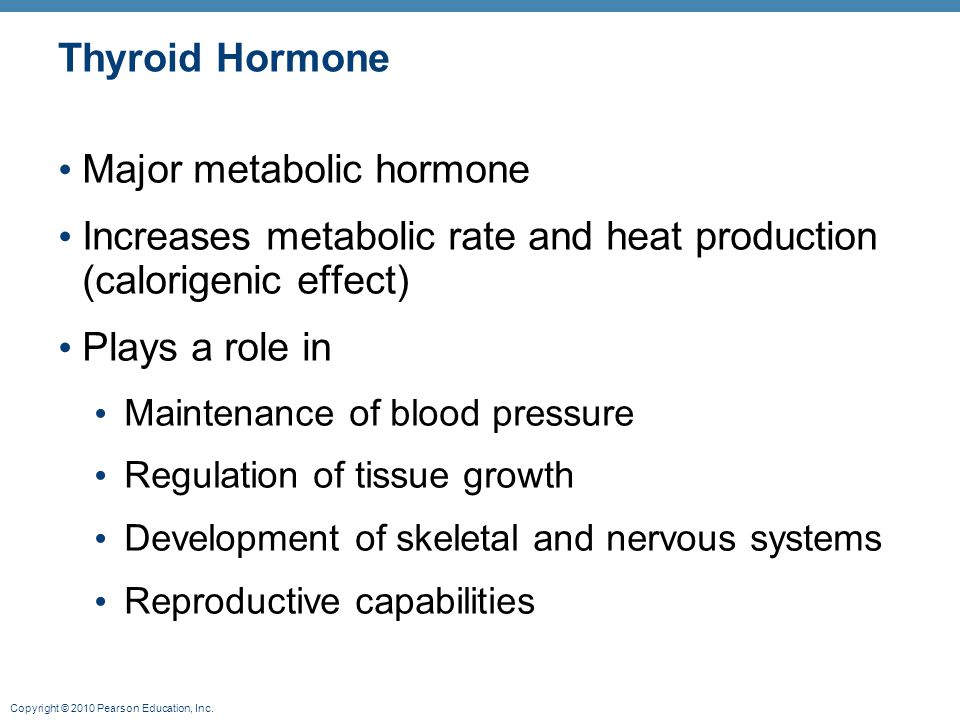 Major metabolic hormone