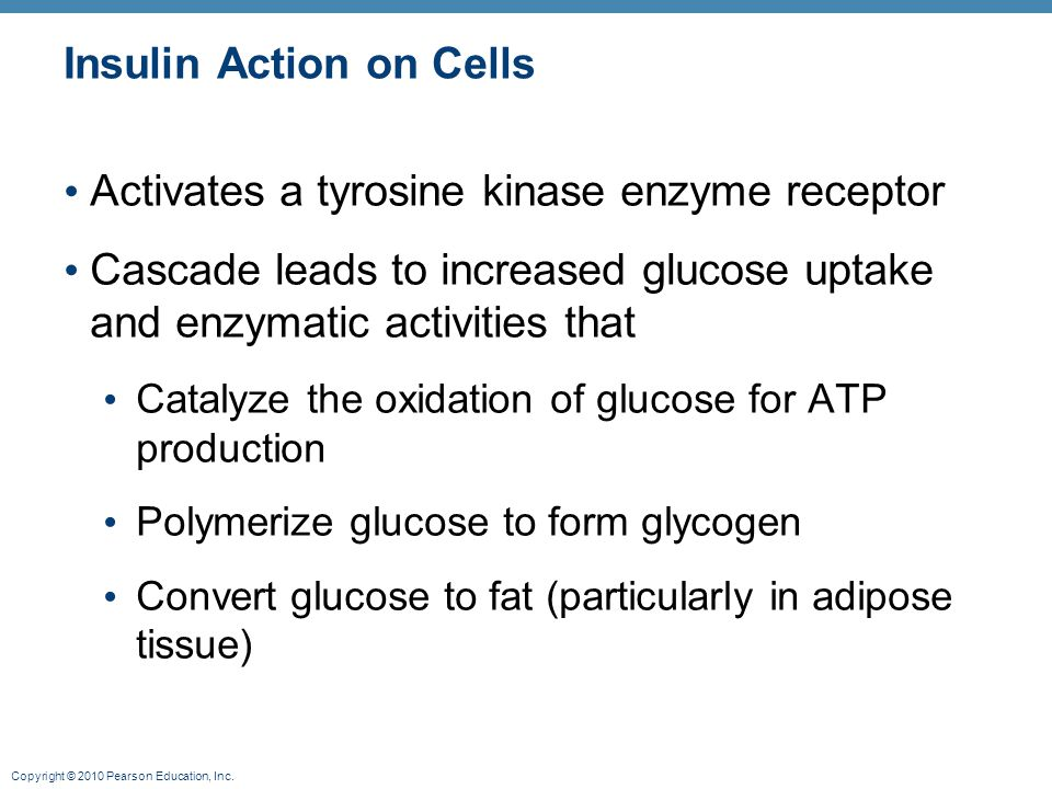 Insulin Action on Cells
