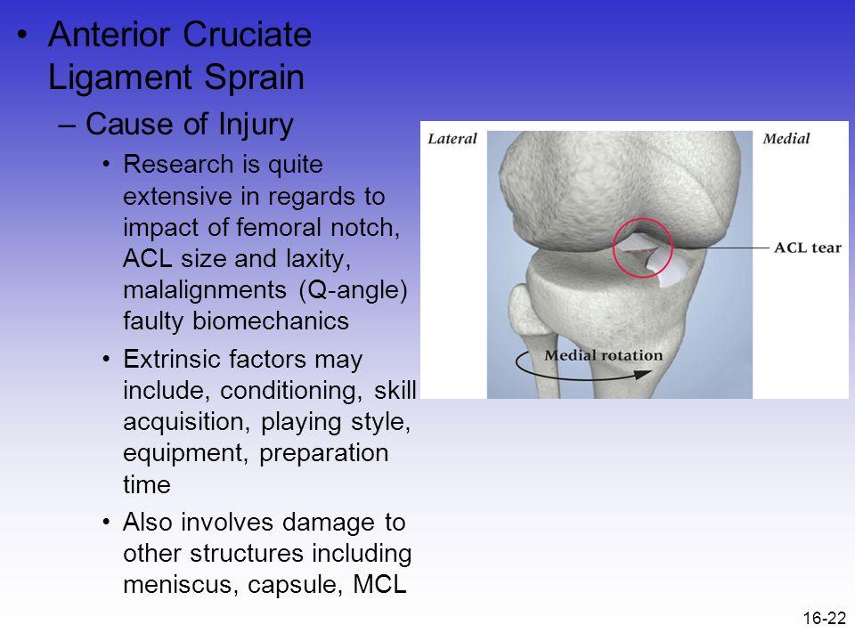 Anterior Cruciate Ligament Sprain