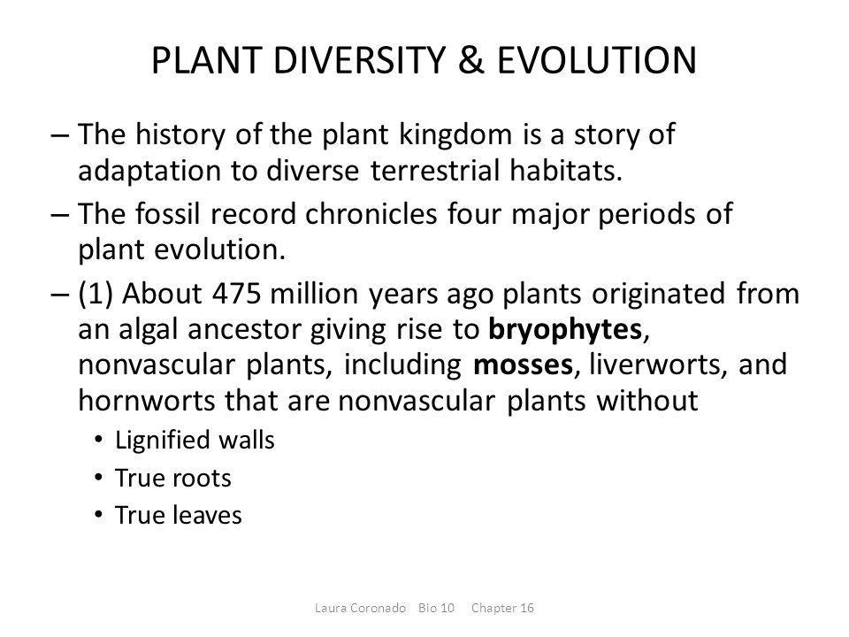 PLANT DIVERSITY & EVOLUTION