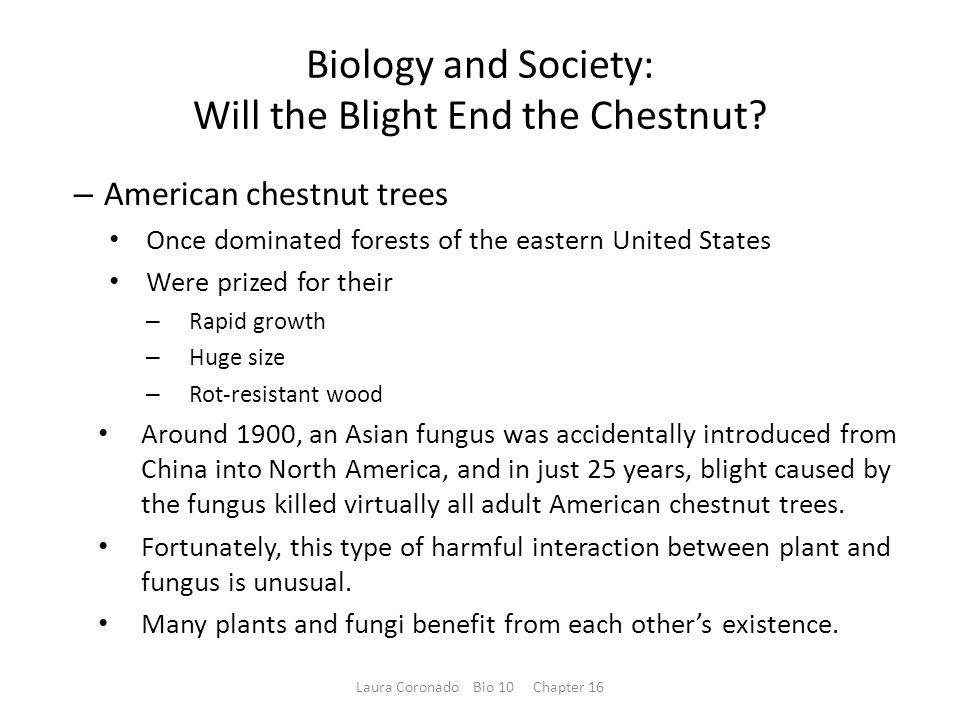 Biology and Society: Will the Blight End the Chestnut