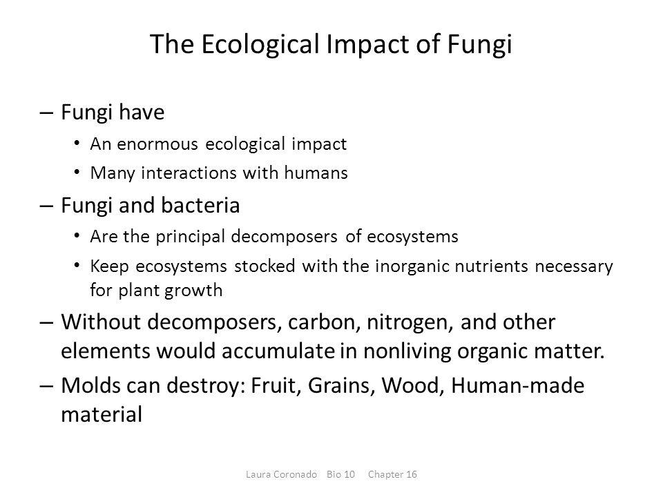 The Ecological Impact of Fungi