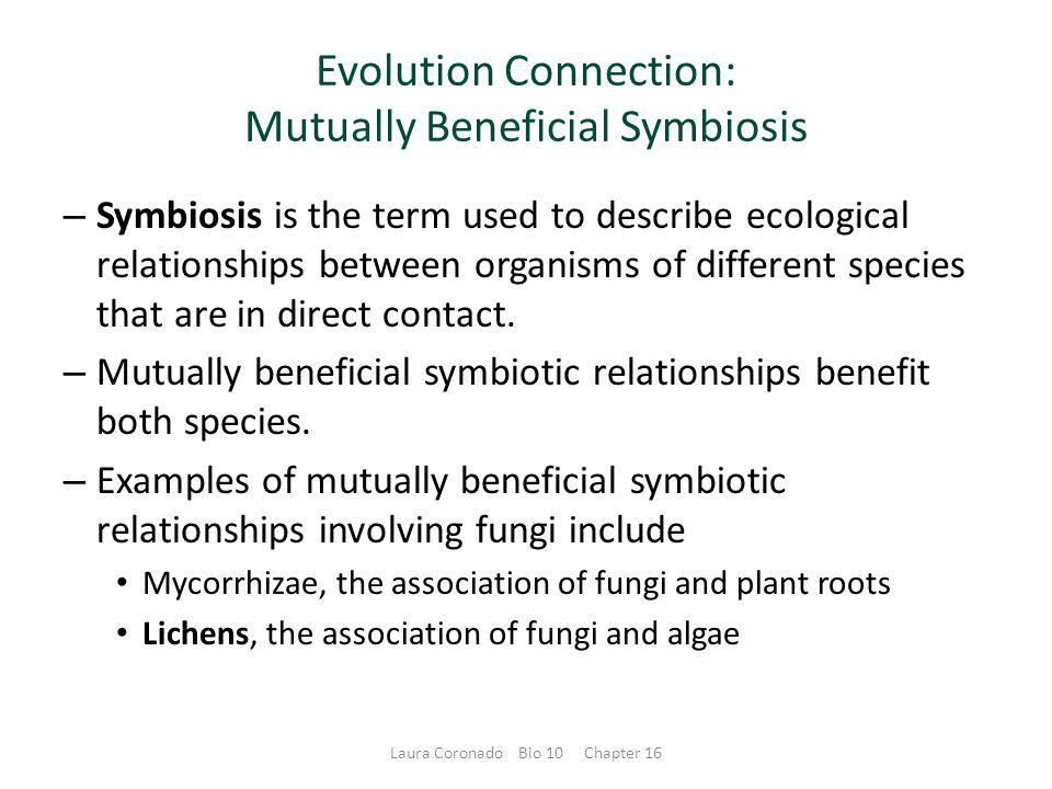 Evolution Connection: Mutually Beneficial Symbiosis