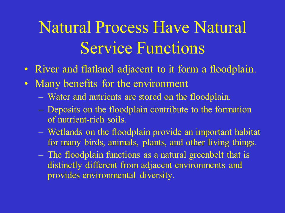 Natural Process Have Natural Service Functions