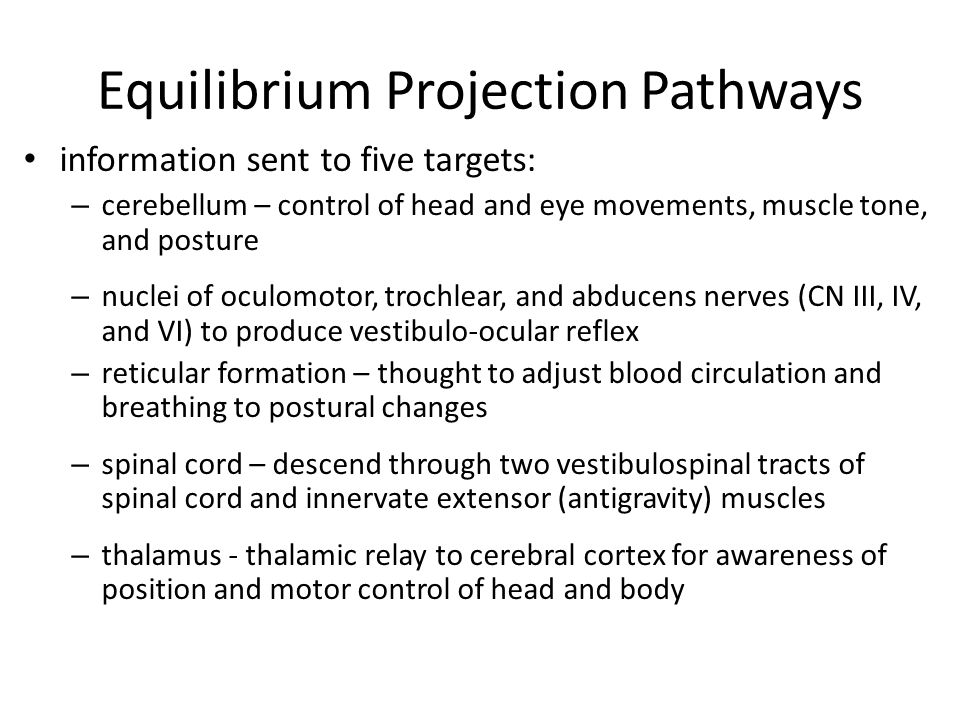 Equilibrium Projection Pathways
