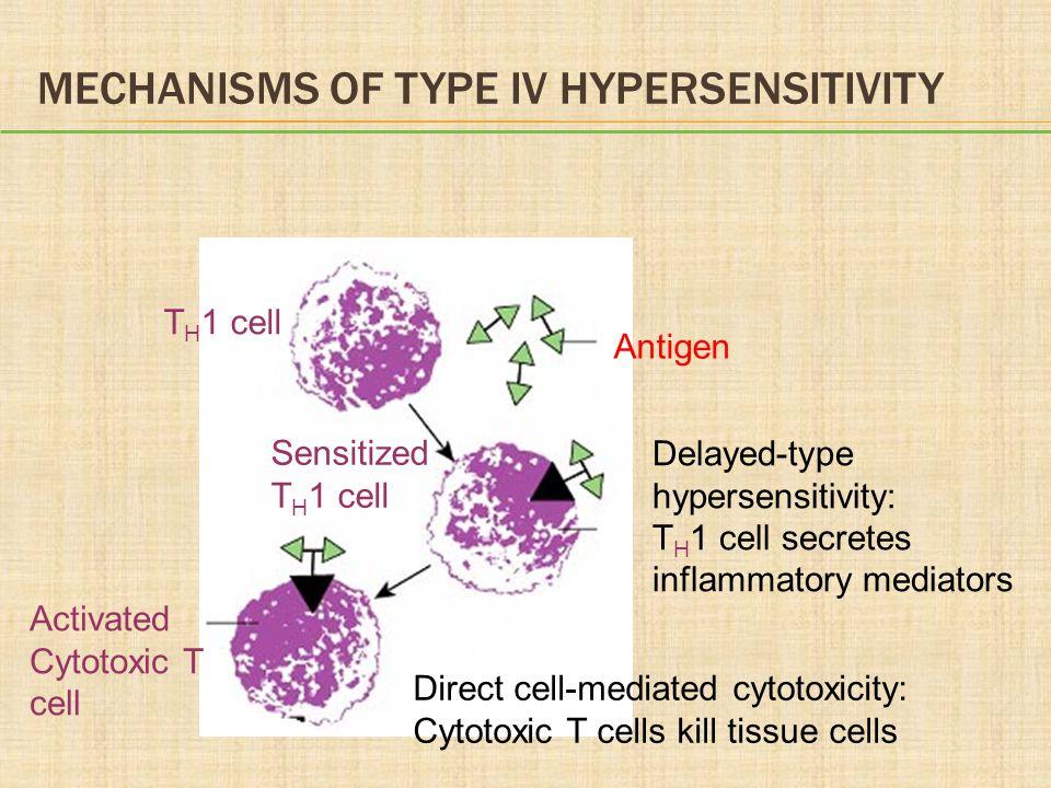Mechanisms of Type IV Hypersensitivity