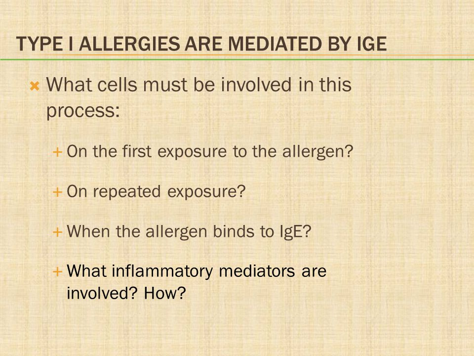 Type I Allergies Are Mediated by IgE