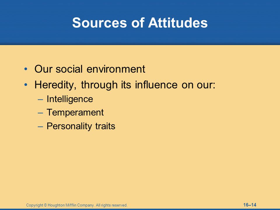 Sources of Attitudes Our social environment
