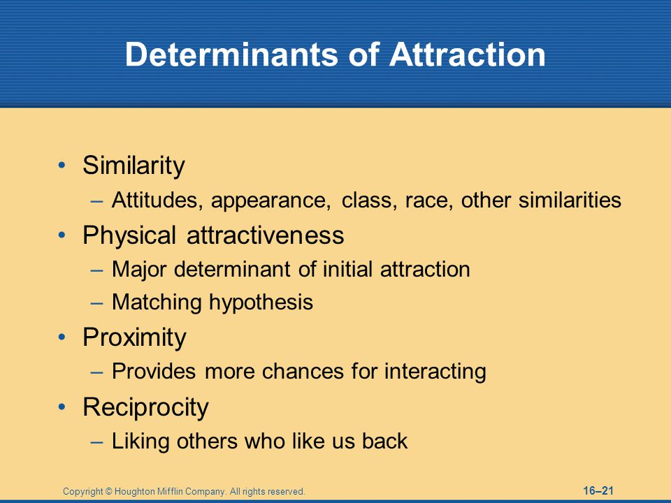 Determinants of Attraction