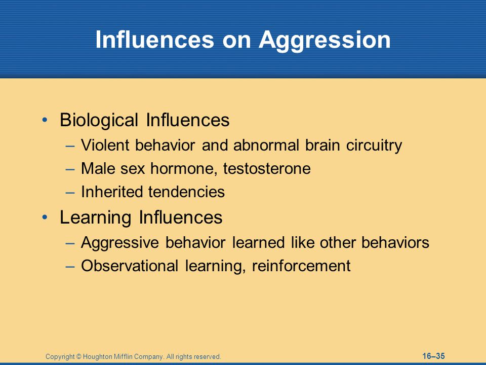 Influences on Aggression