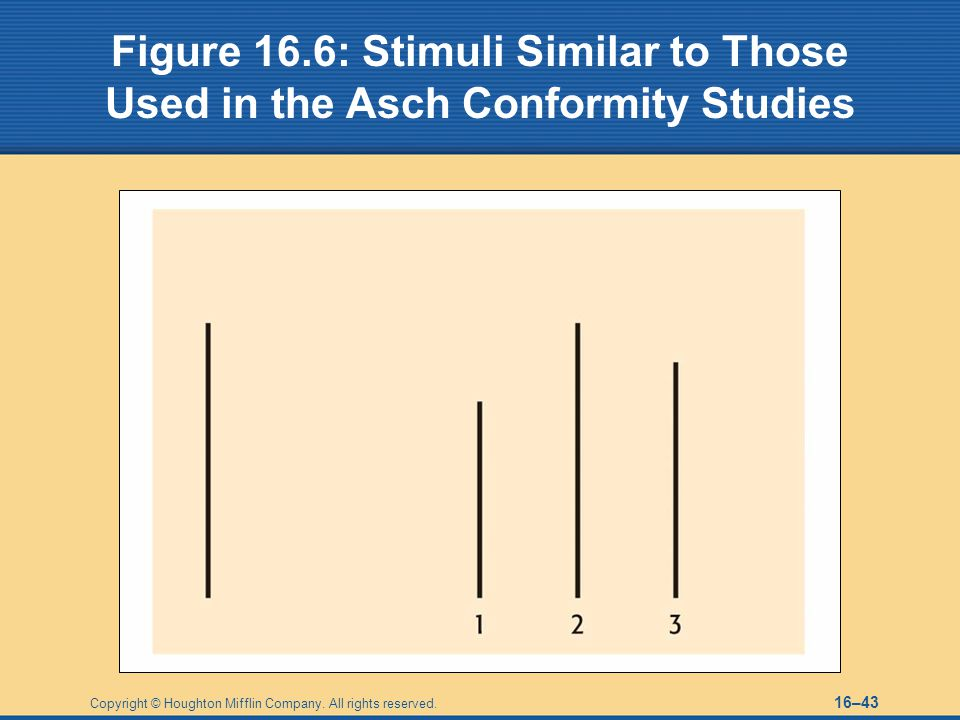 Figure 16.6: Stimuli Similar to Those Used in the Asch Conformity Studies