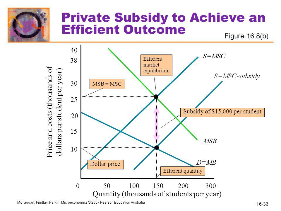 Private Subsidy to Achieve an Efficient Outcome