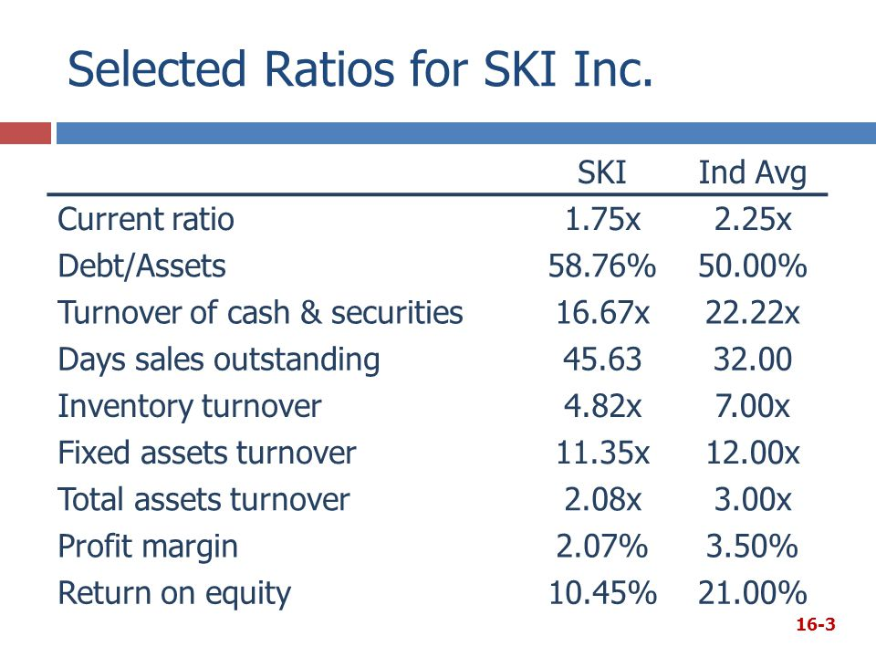 Selected Ratios for SKI Inc.