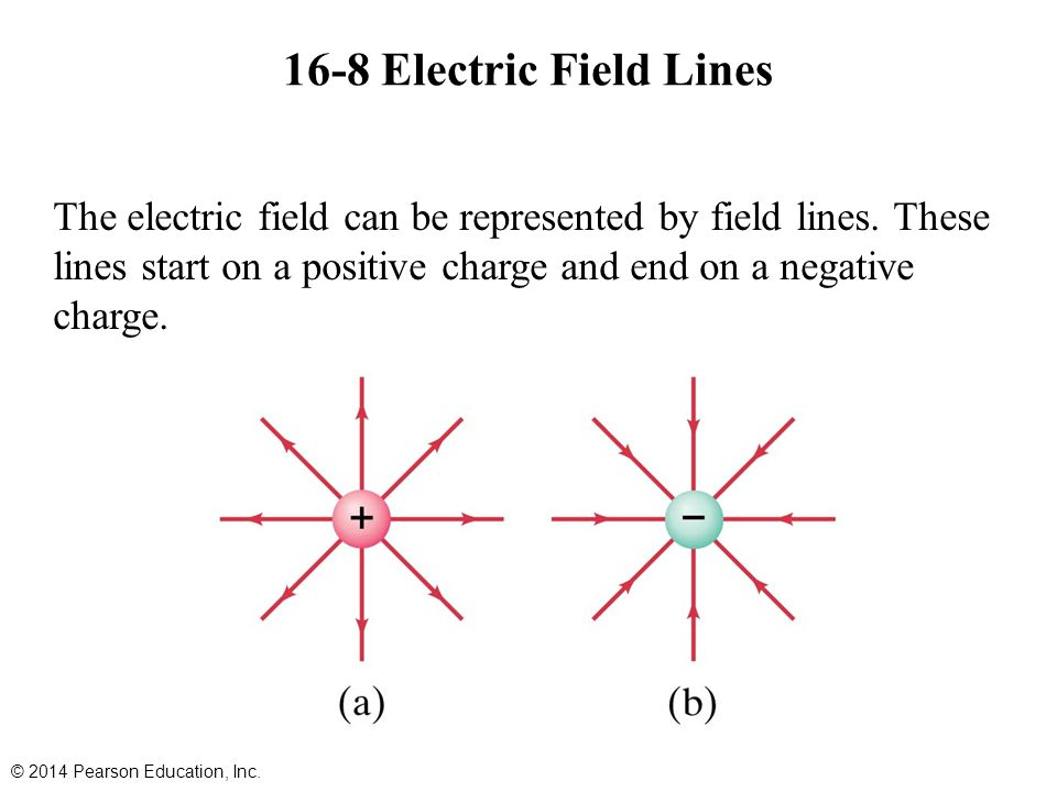 16-8 Electric Field Lines The electric field can be represented by field lines. These lines start on a positive charge and end on a negative charge.