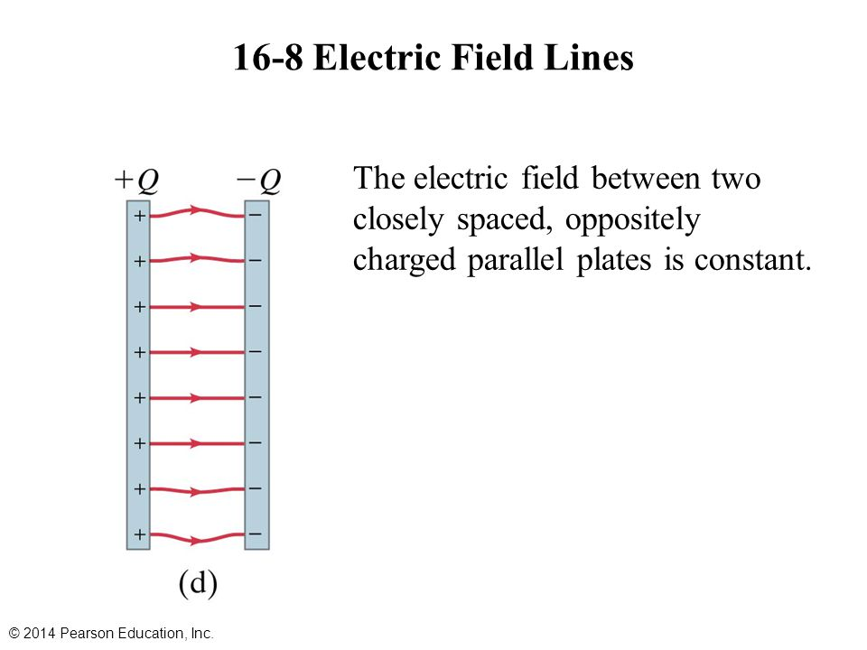 16-8 Electric Field Lines The electric field between two closely spaced, oppositely charged parallel plates is constant.