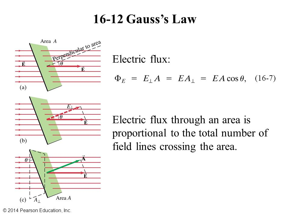 16-12 Gauss's Law Electric flux: Electric flux through an area is proportional to the total number of field lines crossing the area.