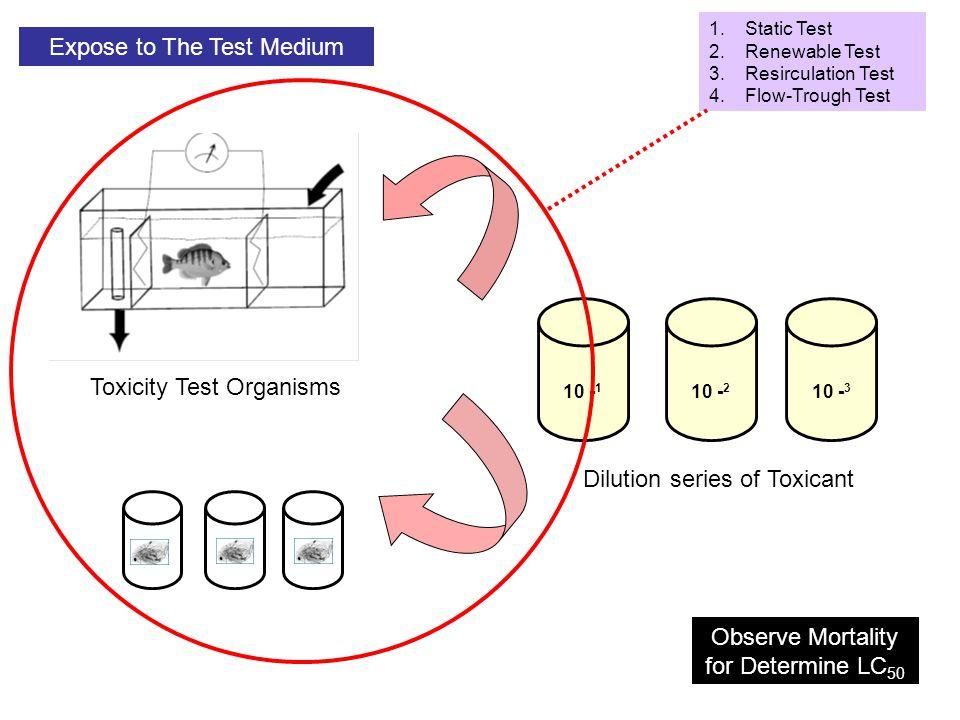 Expose to The Test Medium
