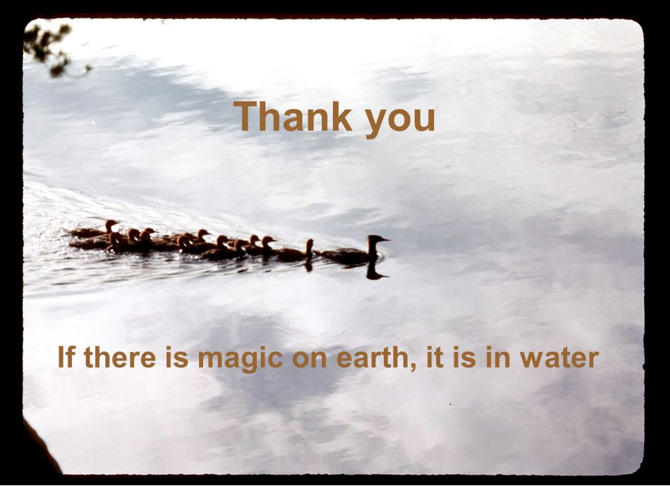 Thank you If there is magic on earth, it is in water