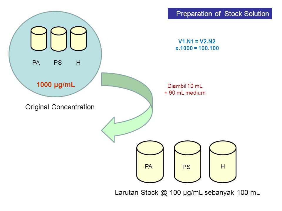 Preparation of Stock Solution