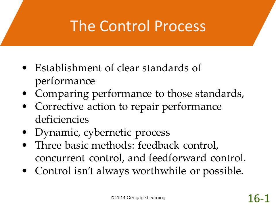 The Control Process Establishment of clear standards of performance. Comparing performance to those standards,