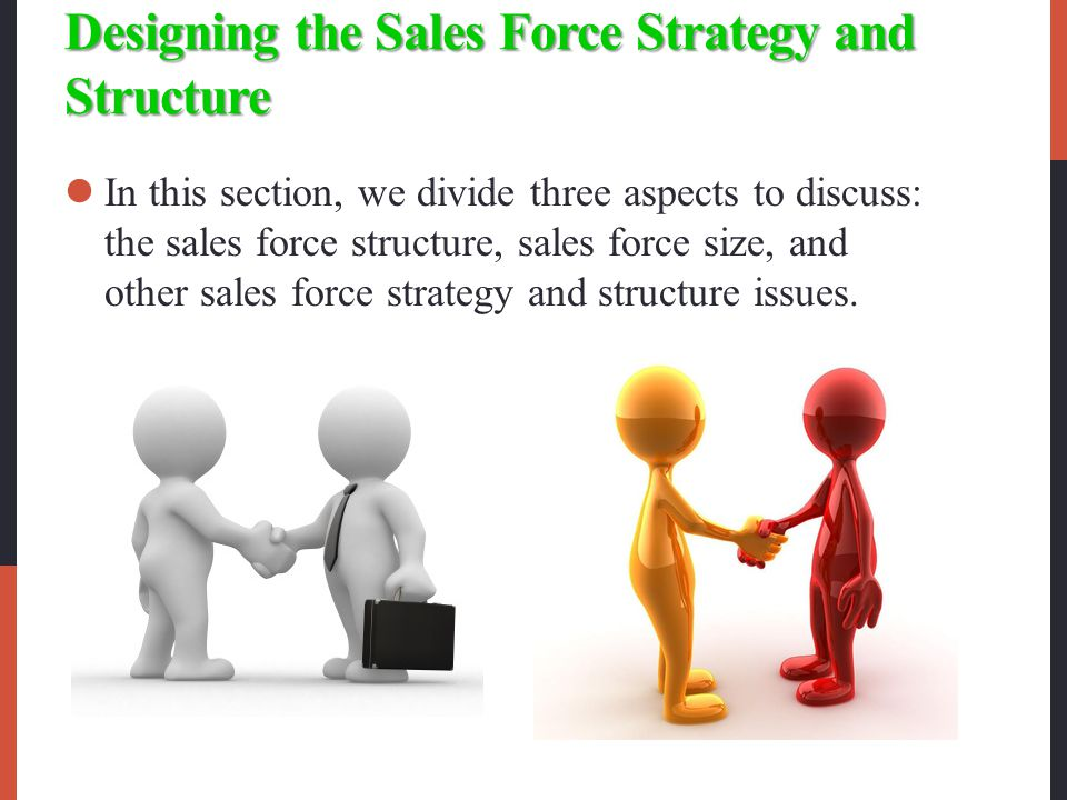 Designing the Sales Force Strategy and Structure