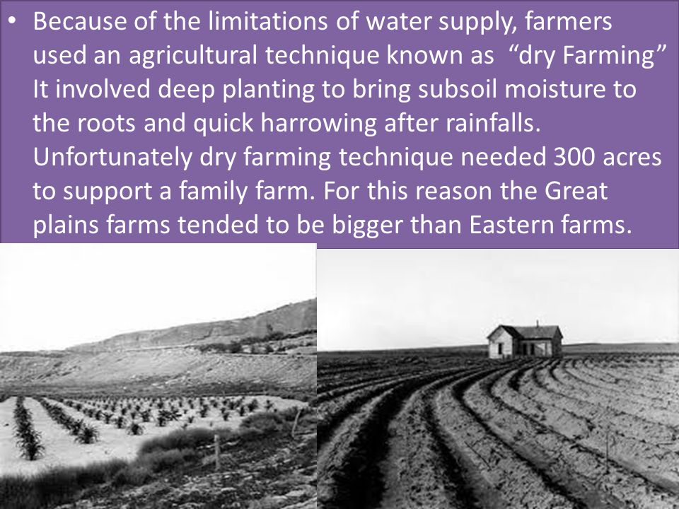 Because of the limitations of water supply, farmers used an agricultural technique known as dry Farming It involved deep planting to bring subsoil moisture to the roots and quick harrowing after rainfalls.