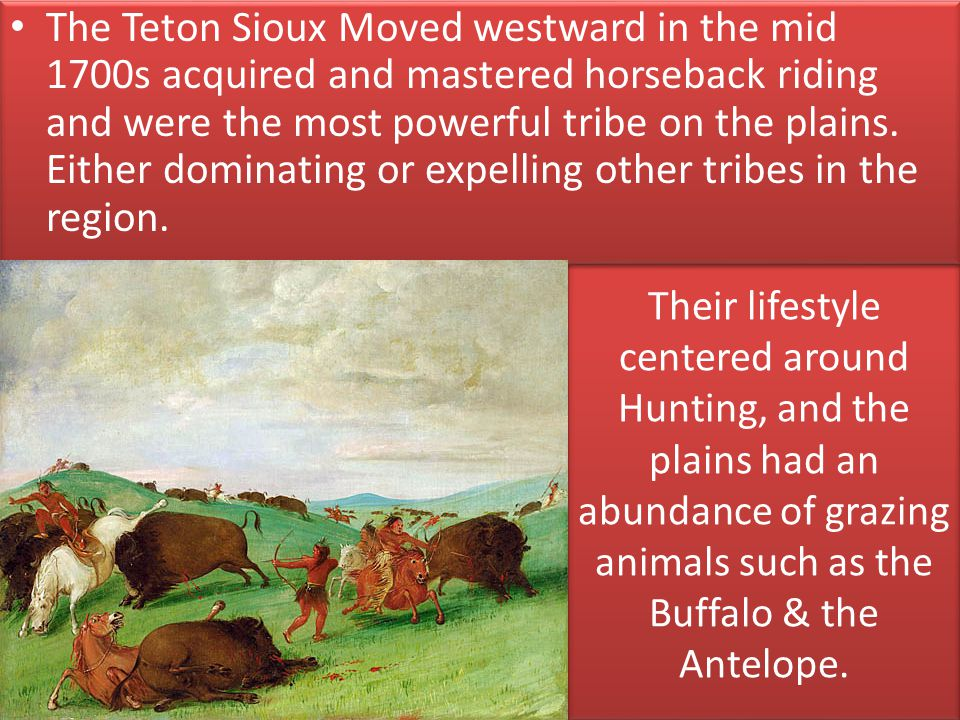 The Teton Sioux Moved westward in the mid 1700s acquired and mastered horseback riding and were the most powerful tribe on the plains. Either dominating or expelling other tribes in the region.
